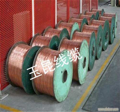 贵州铝合金电缆公司