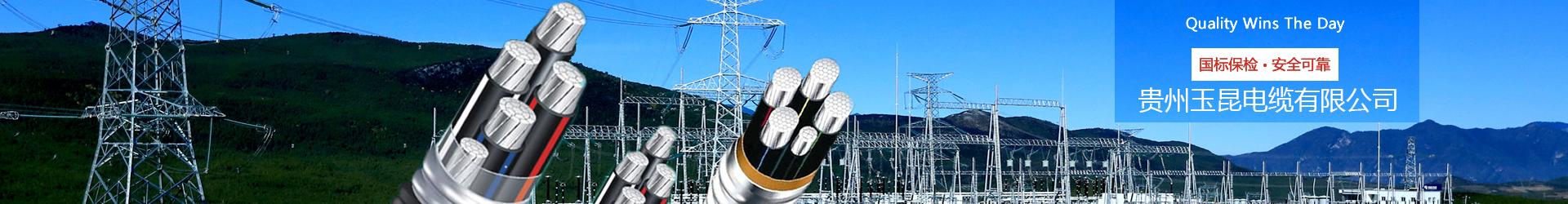 贵阳电线电缆厂家